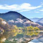 À la découverte du monde à travers les villes coréennes